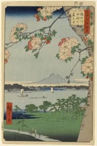 隅田川水神の森真崎